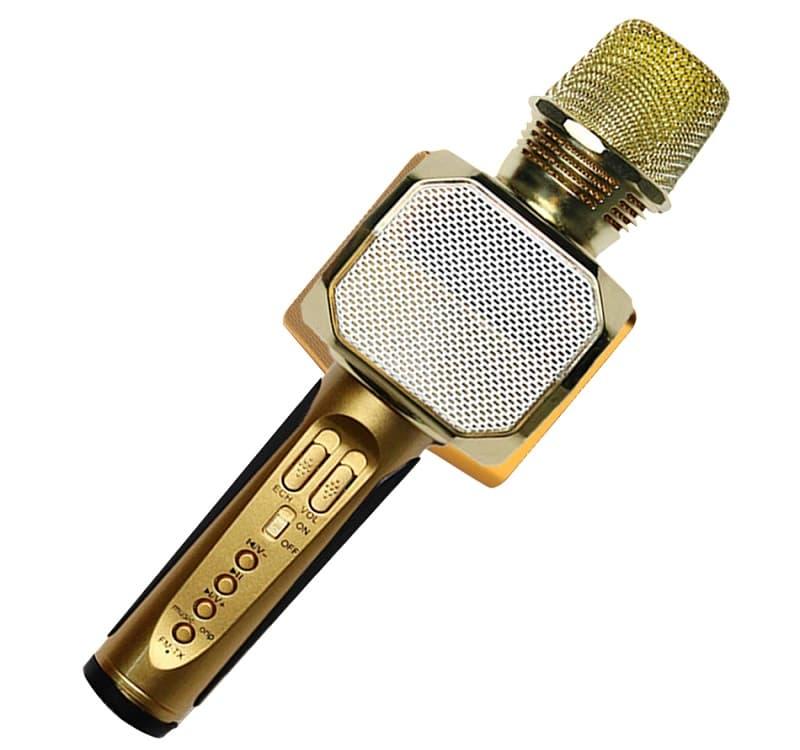 mẫu mic hát karaoke bluetooth sd 10