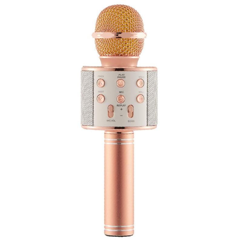 mic hát karaoke bluetooth DS858 DS868 và DS878